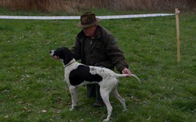 Svod mladých psů loveckých plemen